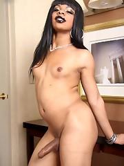 Ebony tranny babe strips