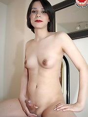Paneez is a stunning brand new to modelling transsexual female from the Toronto area. Paneez is extremely nice, docile, and overall just a beautiful c