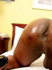 Black TGirls November Girl of the Month, Brittany, is back with that bootylicious bottom of hers.