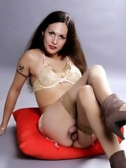 Amazing transsexual pin-up girl Nikki posing