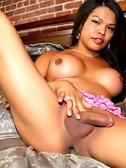 Irresistible tgirl Carmen Moore stripping in the bed