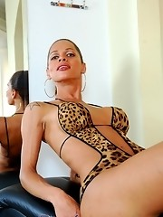 Adorable transsexual posing